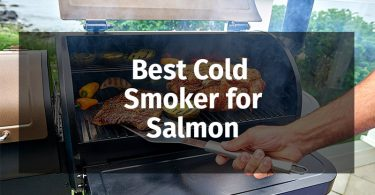 Best-Cold-Smoker-for-Salmon